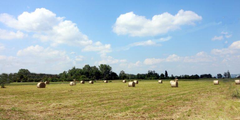 Mondovì terreno agricolo di circa 7 giornate piemontesi