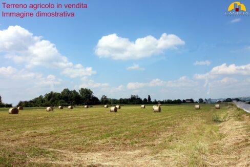 Mondovì terreno agricolo irriguo 8 giornate